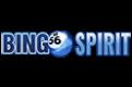 BingoSpirit $20 Free Chip