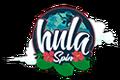 Hula Spin Casino 100% First Deposit