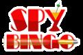 Spy Bingo 5 – 100 Free Spins