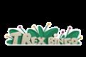 Trex Bingo 5 – 100 Free Spins